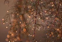 ❅ Winter vibes