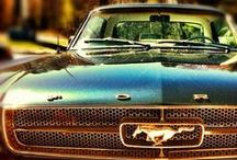 Classic Mustang Rides / All Classics All the Time!