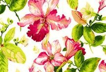 Floral's Trends / Make floral the beauty of your trends
