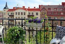 Ogród na balkonie!