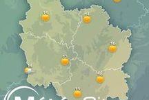 Bourgogne / La Bourgogne est une terre de gastronomie et de vent. Ses vignes de renommée internationale offrent de magnifiques paysages. Découvrez toutes les informations, les prévisions météo et les plus belles images de la #Bourgogne dans ce tableau ! / by MeteoCity