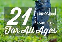 Homeschool Goodies / Great ideas & resources for homeschool materials, free printables and projects.
