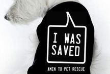 """ANIMALS THAT NEED A HOME /  """"For the Love of Animals!"""" This board is dedicated to saving animals from the """"KILL ZONE!"""" Animal Adoption & Fostering PINS only. The Pin you post may save the life of an animal. ADOPT or FOSTER TODAY! Bless the animal rescues, shelters, and foster agencies for they are on the front line saving animals. ABSOLUTELY NO ADVERTISEMENTS."""