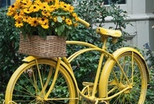 Yellow / My favorite color! I have loved yellow all my life! Never tire of it!!