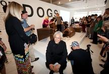 MIAMI EXHIBITION / Photos from the Architecture for Dogs exhibit in Miami's Design District, during Design Miami 2012.