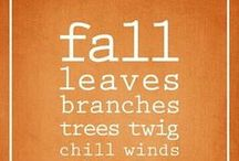 Falling for Autumn  / All our favorite fall things!