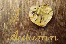 Autumn, sweet autumn!