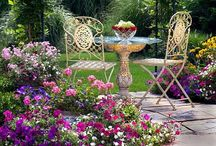 Gardens and beautiful outdoor spaces / Ideas and just plain pretty