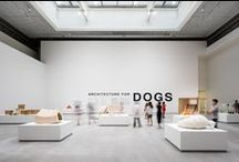 Shanghai Exhibition 8.8.15 / 8/8 opening at the Shanghai Himalayas Museum. #ArchitectureForDogs #設計為了愛犬 #HimalayasMuseum