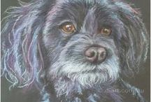 Pet Portraits  by Dianne Osborne /  Paintings I have done of some of the cutest pets.
