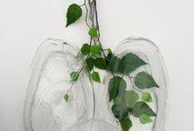 Vasos, Flores e Plantas