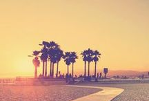 Californication / Planning holidays in California