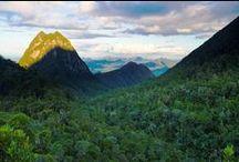 Les parcs nationaux de Madagascar / L'île compte 18 parcs nationaux, 5 réserves naturelles intégrales et 23 réserves spéciales