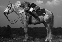 Fashion Looks: Equestrian / Everything you need to nail the equestrian look.