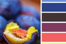 Palette / color combinations