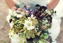 Wedding / Life is so beautiful...