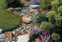 Inspiring Gardening and Landscaping / Enhance your outdoor space with these gardening and landscaping inspirations.