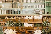 l i t t l e s h o p s / someday maybe.. a little shop