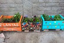 Espacio Huerto & Jardin / Cajones reciclados decorativos con hierbas, hortalizas, flores y cactus a elección para interior y exterior.