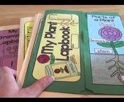Lapbook - pomysły