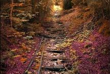 Tracks and Rails to Past and Future... / left behind, forgotten, abandoned, decayed, urbex