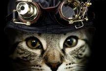 Steampunk... / steampunk, dieselpunk