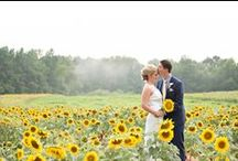 Sunflower Field Inspiration Shoot / Hope and Faith styled shoot for the Fall 2015 issue of Inspire Weddings and Marriage magazine