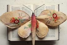 Butterflies and Moths (Yr8)