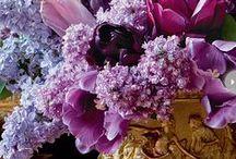 Ruusuja ja Muita kukkia