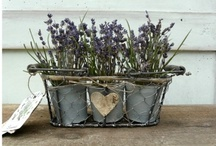 Provence / French, provence, shabby chic and rustic style