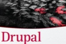 Drupal Books / by Druvision