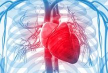 Cardio health / Learn more about how to improve cardiovascular health.