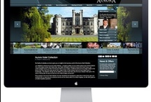 Website Design / A small selection of our recent website design work.