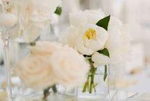 Blanc / Creamy white wedding inspiration and decoration ideas.
