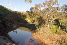 Ethan Allen Drone edit 1 / Drone flight in Australia