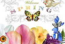 Spring / GM