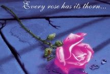 All about Roses / GM