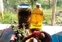 Free Fire Cider / Fire Cider recipes in all their glorious variations! / by Mountain Rose Herbs