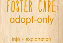 Adoption / Preparing to adopt in Florida through the Foster Care system