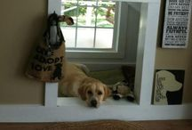 All things for Mylo / Really cool ideas for your dog. Inside and outside of your home.