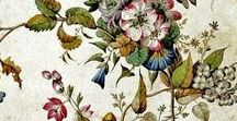 William Kilburn /  (1745–1818) was an illustrator for William Curtis' Flora Londinensis, as well as a leading designer and printer of calico. A few hundred originals of his water colour designs make up the Kilburn Album, housed at the Victoria and Albert Museum in London.(wikipedia.org)