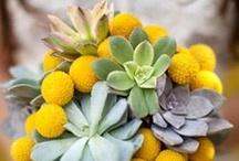 Bouquet Inspirations