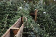 Noël / décorations et créations