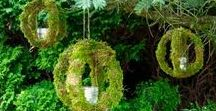Moss Creations / Moss isnt just limited to ground cover... check out what these other pinners did with moss just like ours!