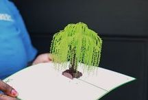 Arbor Day / Who doesn't love trees?  Help us spread the green this year for Arbor Day 2016 by sending someone special a Willow Tree pop up card. Every card sold plants a tree! http://www.lovepopcards.com/products/willow-pop-up-card