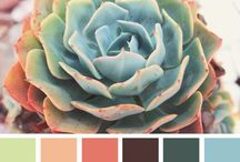 Color palettes / Check out my site: www.triedandtrueprojects.com for ideas about this and other types of projects!