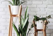 Inspiration | Plantes