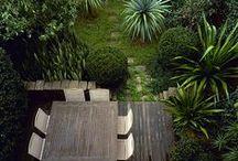 Outside / Garden
