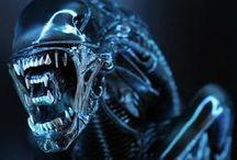 Alien Warrior LSB (Sideshow) / Alien Warrior LSB (Sideshow)