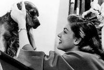 A Star's Best Friend / by Lorraine Funke